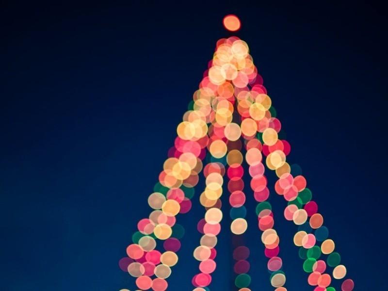 FDA Christmas Reception